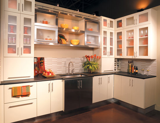 Sleak Kitchen Cabinet Doors Fronts