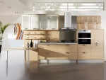 Woody Kitchen Cabinets Modern